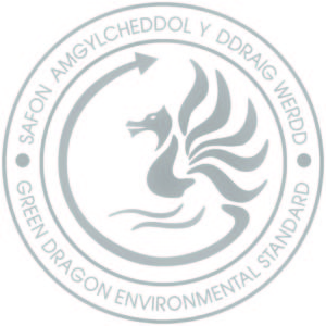 grey dragon logo